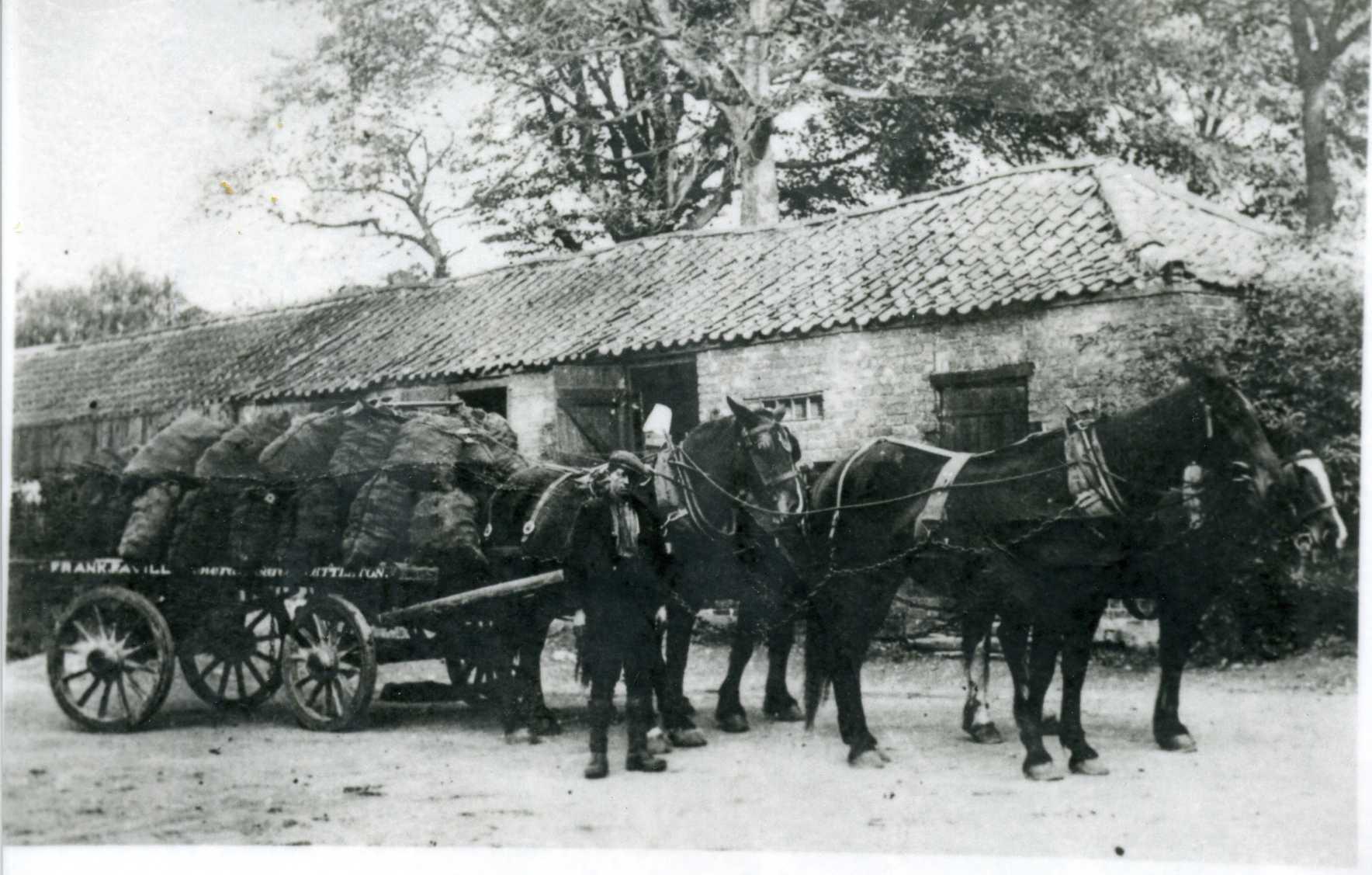Frank Favill - Nettleton Coal with 4 Horses